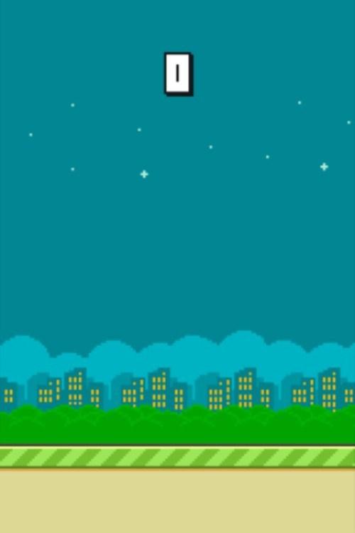 flappy bird - 9000355328