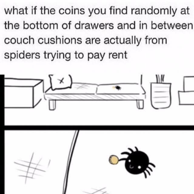 spiders - 9000518912