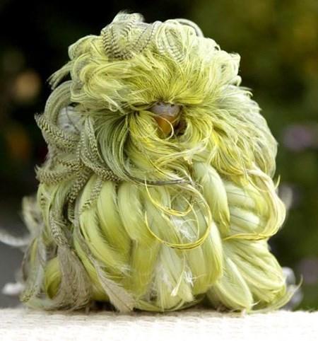 fluffy - Yellow