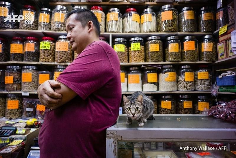Supermarket - AFP 10804/h 4 Anthony Wallace/AFP