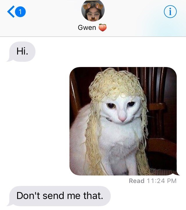 texting Cats - 9000608256