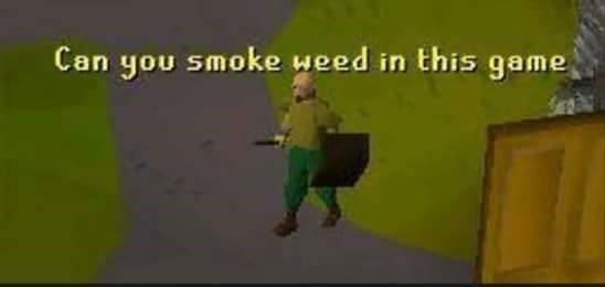 Animation - Can you smoke weed in this game