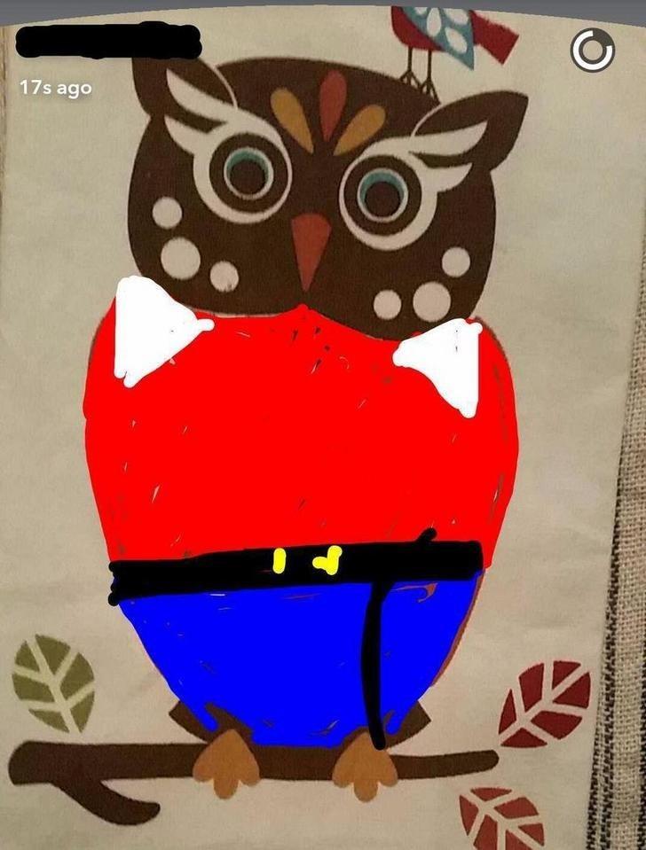 snapchat pun - Owl - 17s ago