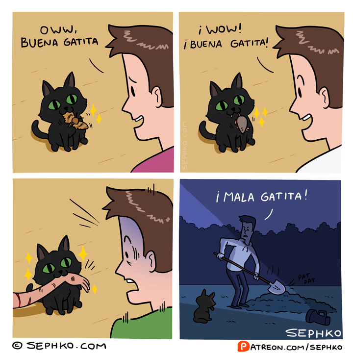 gatita