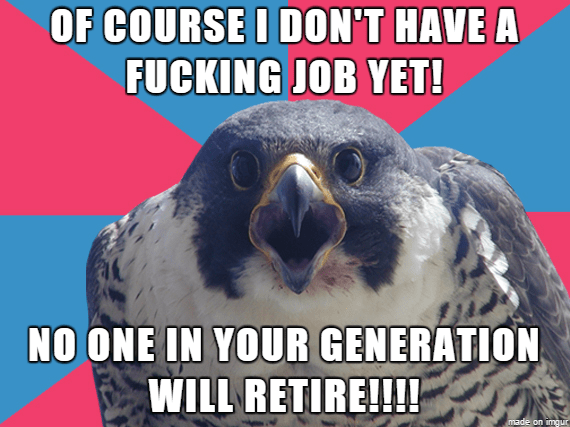 Bird - OF COURSE I DON'T HAVE A FUCKING JOB YET! NO ONE IN YOUR GENERATION WILL RETIRE!!!! made on imqur