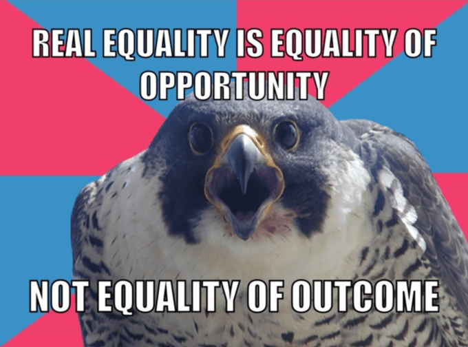 Bird - REAL EQUALITY IS EQUALITY OF OPPORTUNITY NOT EQUALITY OF OUTCOME