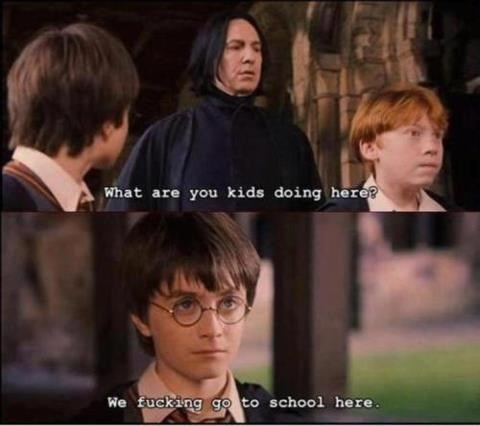 meme of harry potter having tense exchange with the snape