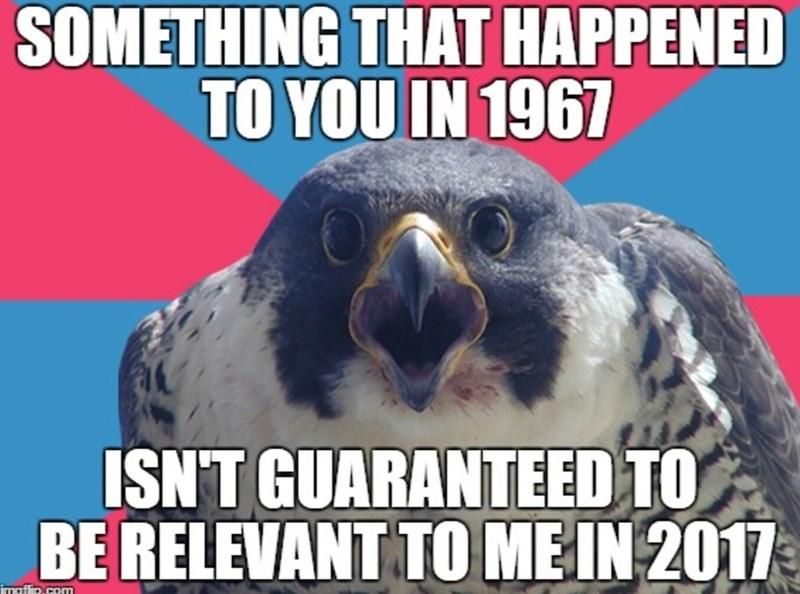 millennial falcon - 9002141696