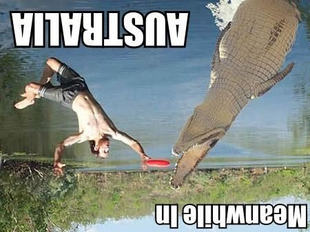 Memes - 9002164992