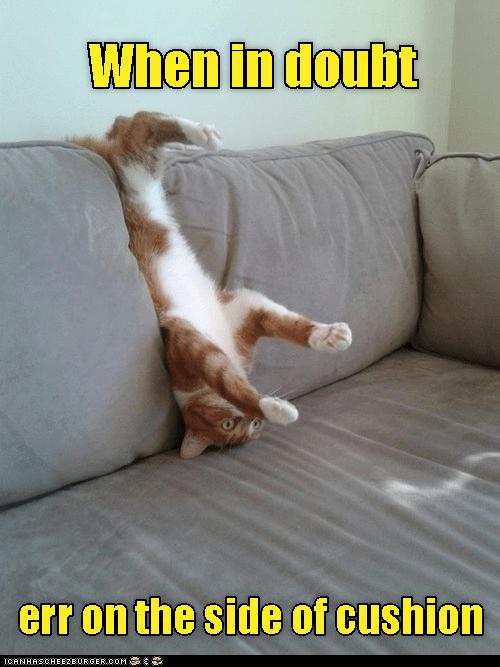 cat side caption when doubt - 9002600960