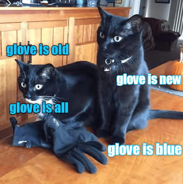 blue old glove new caption Cats all