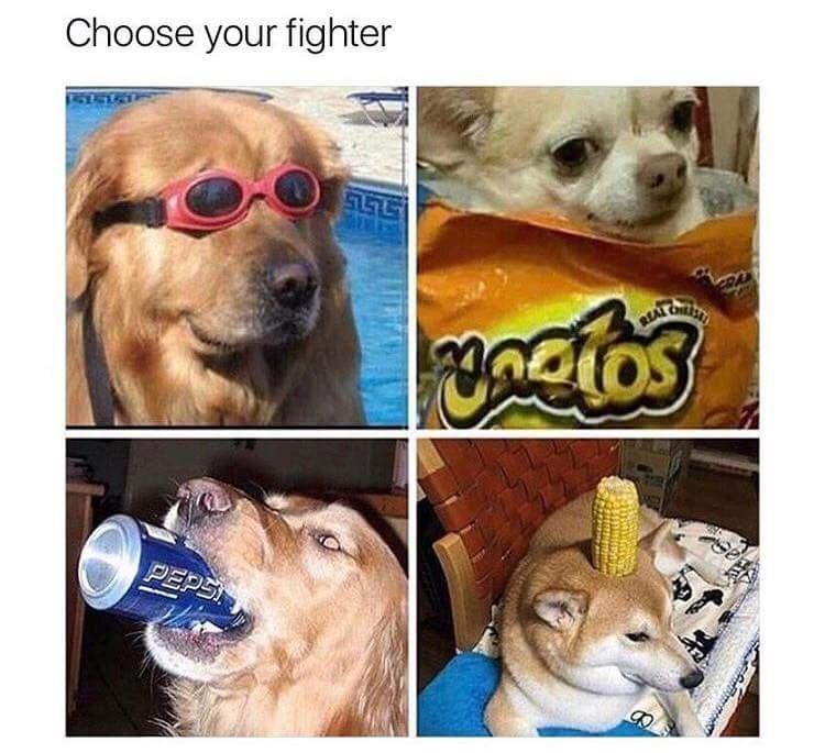 pupper doggo - 9002627328