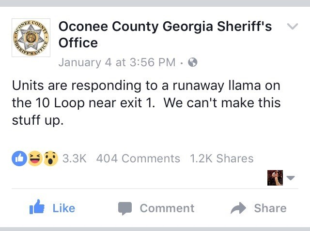 Text - Oconee County Georgia Sheriff's COUNTY Office January 4 at 3:56 PM Units are responding to a runaway llama on the 10 Loop near exit 1. We can't make this stuff up 3.3K 404 Comments 1.2K Shares Share Comment Like OFFICE