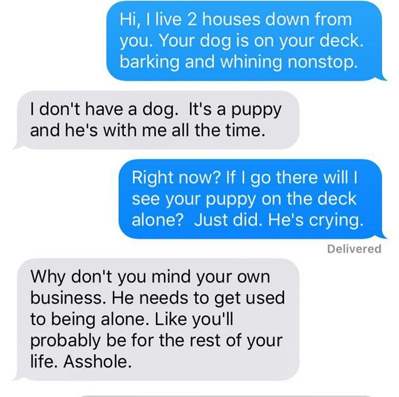 neighbor text message complaining about a puppy