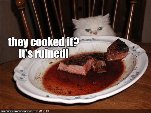 cat ruined cooked caption - 9003293952