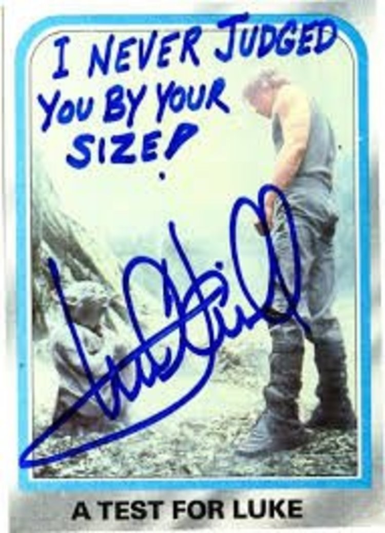 Collectable - I NEVER JUDGED You BY YOUR SIZEP A TEST FOR LUKE
