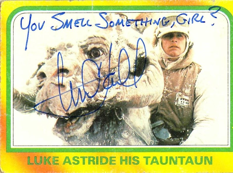 Signature - Cov SMELL SOMETHNG,GIRL LUKE ASTRIDE HIS TAUNTAUN
