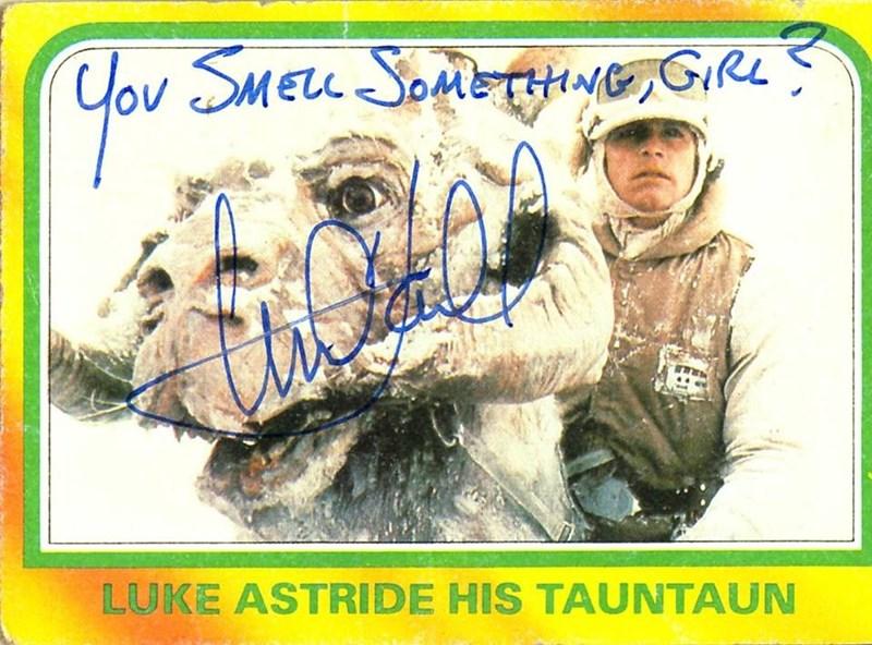 Signature - Cov SMELL SOMETHNG,GIRL LUKE ASTRIDE HIS TAUNTAUN