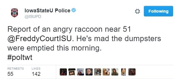Text - lowaStateU Police Following @ISUPD Report of an angry raccoon near 51 @FreddyCourtlSU. He's mad the dumpsters were emptied this morning. #poltwt RETWEETS LIKES 55 142