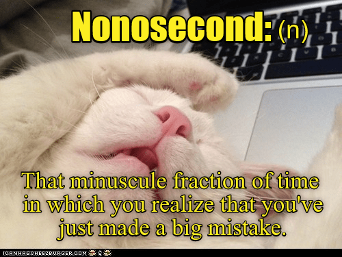 cat,time,nonosecond,big,caption,mistake,fraction