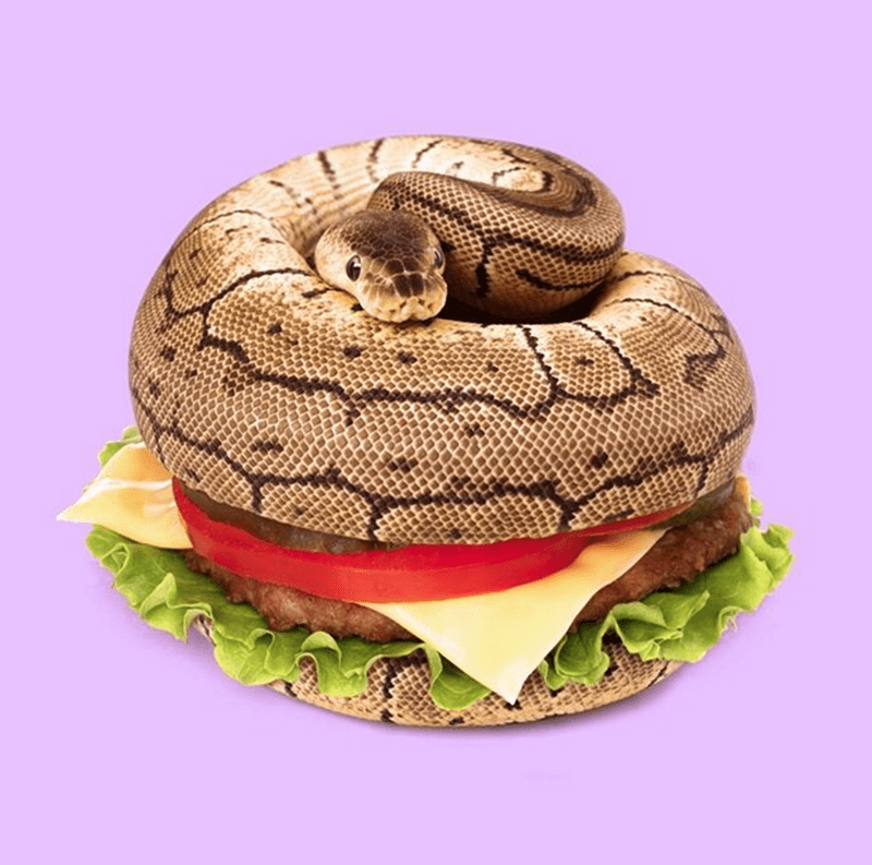 Cheezburger Image 9004490496