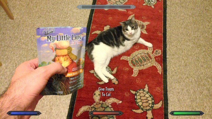 Cat - My Little Lion Cat Ta ock Ret Ma tesaei Noce Give Treats To Cat