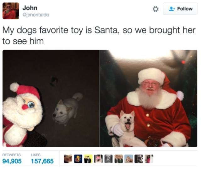 Text - John jjmontaldo Follow My dogs favorite toy is Santa, so we brought her to see him LIKES RETWEETS 157,665 94,905