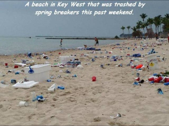 Beach - A beach in Key West that was trashed by spring breakers this past weekend.