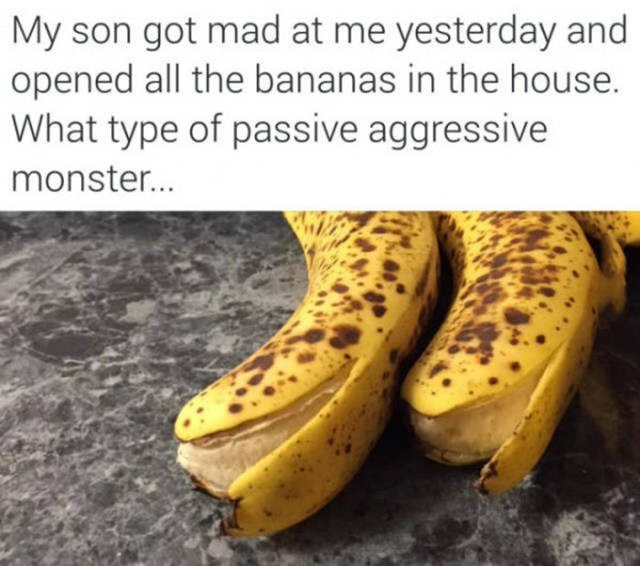 Banana family - My son got mad at me yesterday and opened all the bananas in the house What type of passive aggressive monster...