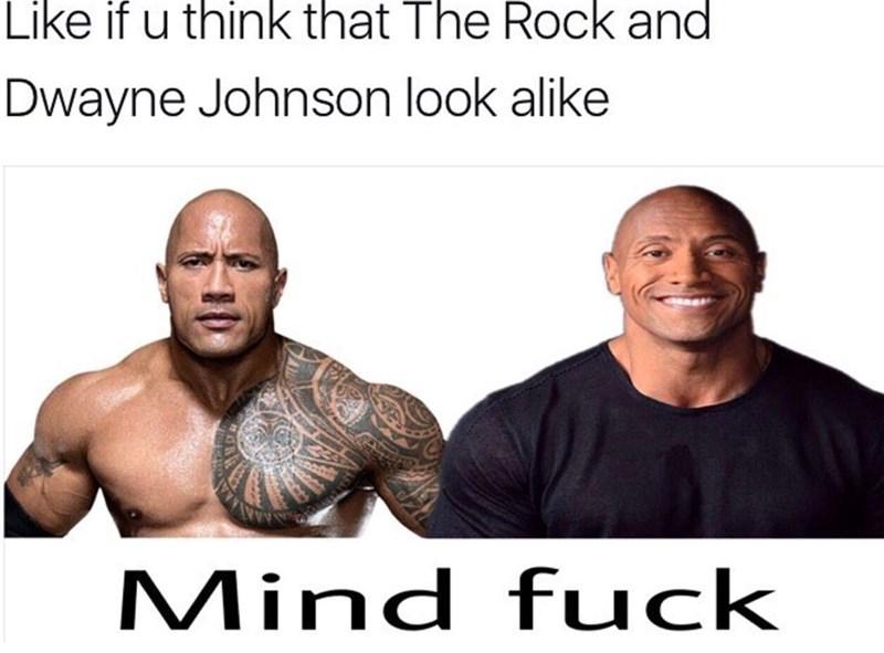 Memes - 9004766720