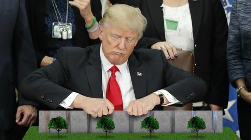 trump - Green