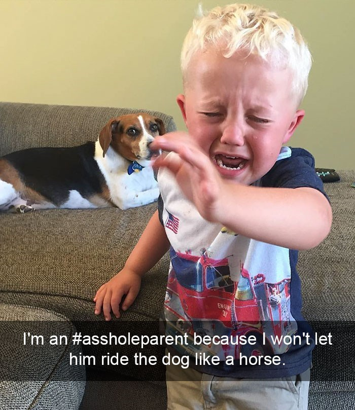 Cheezburger Image 9005017088
