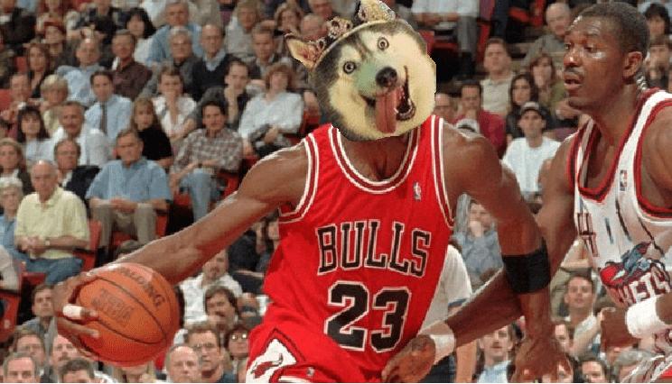 Sports - BOLLS 23 ALDNG NBA