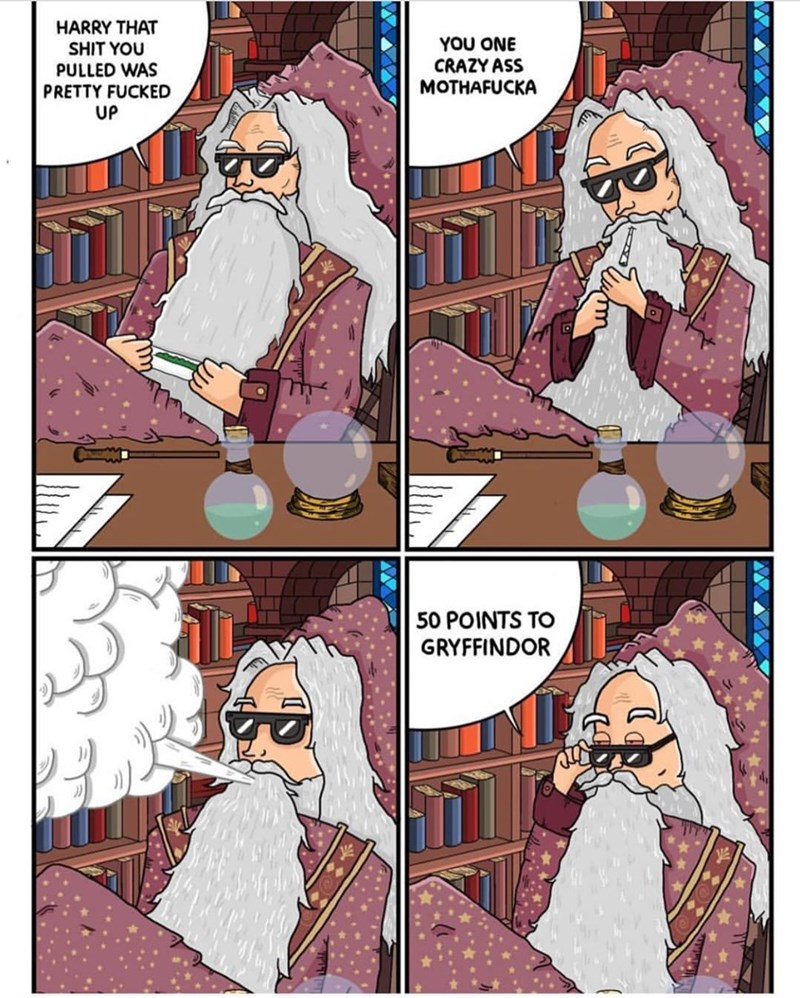 Harry Potter,web comics