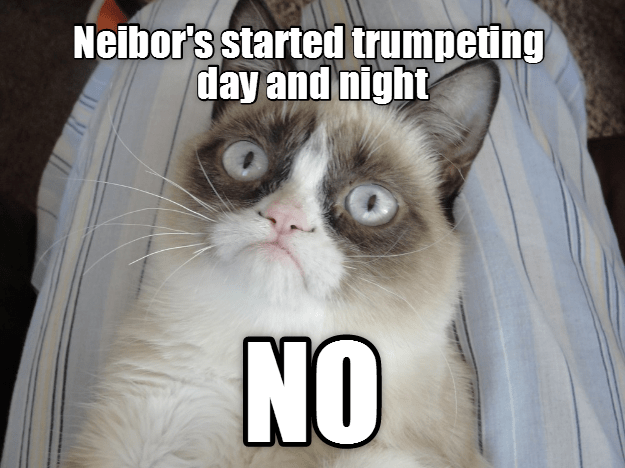 Grumpy Cat day night caption trumpeting neighbor - 9005217280