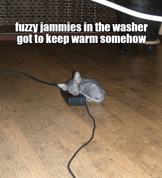keep jammies cat fuzzy washer caption warm