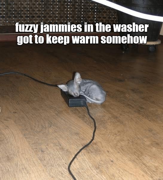 keep jammies cat fuzzy washer caption warm - 9005305088