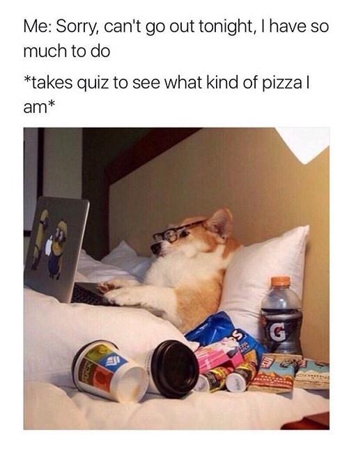 pizza Memes - 9005414912