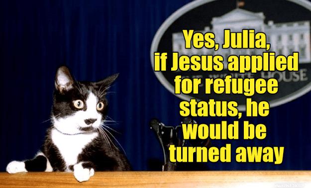 jesus cat turned refugee caption status applied away - 9005493504