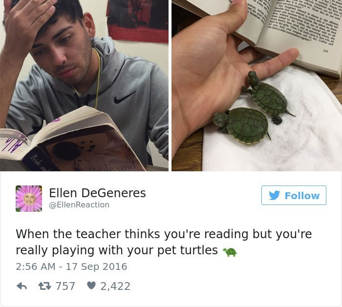 Adaptation - o La, aseer, bed. Sell the st besat d by M Re e Now, 1 de t wih sa pevng bold le so e and Follow When the teacher thinks you're reading but you're really 2:56 AM 17 Sep 2016 Ellen DeGeneres @EllenReaction playing with your pet turtles 2,422 757 Pride an