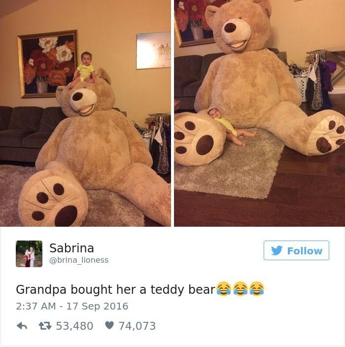 Teddy bear - Sabrina Follow @brina_lioness Grandpa bought her a teddy bear 2:37 AM 17 Sep 2016 53,480 74,073