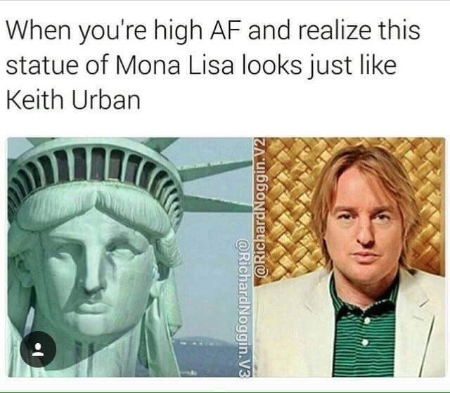 Dank meme that confused pics of Owen Wilson alongside The Statue of Liberty for the Mona Lisa and Keith Urban, which is funny.