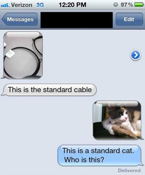 Text - 12:20 PM 97% l Verizon 3G Messages Edit > This is the standard cable This is a standard cat. Who is this? Delivered