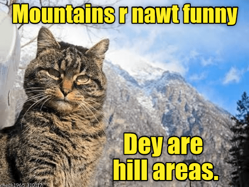 cat areas not mountains caption funny hill - 9006178304