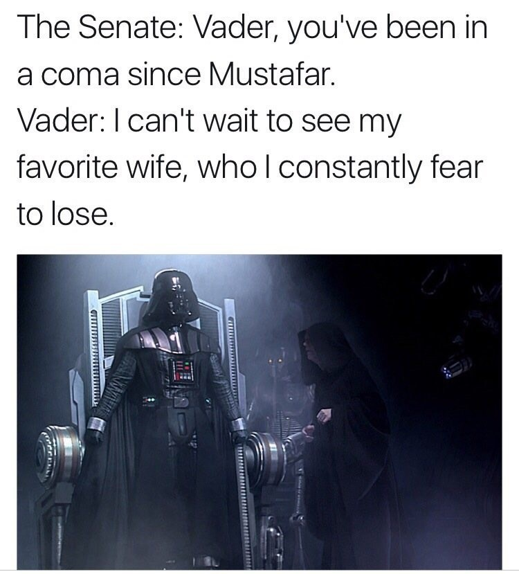 Text - The Senate: Vader, you've been in a coma since Mustafar. Vader: I can't wait to see my favorite wife, who l constantly fear to lose.
