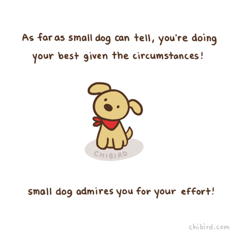 kind words - Text - As far as small dog can tell, you're doing your best given the circumstances! CHIBIRD small dog admires you for your effort! chibird.com