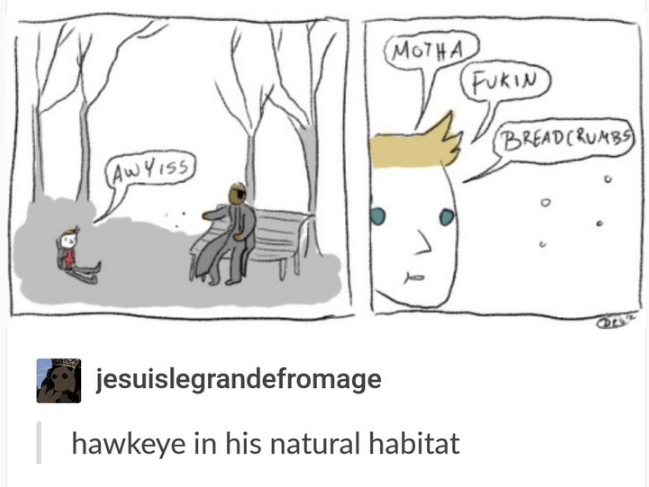 Cartoon - MOTHA FUKIN BREADCRUMBS AwYIsS jesuislegrandefromage hawkeye in his natural habitat