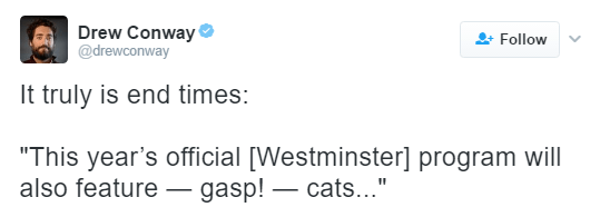 "Text - Drew Conway @drewconway Follow It truly is end times: ""This year's official [Westminster] program will gasp!cats..."" also feature"