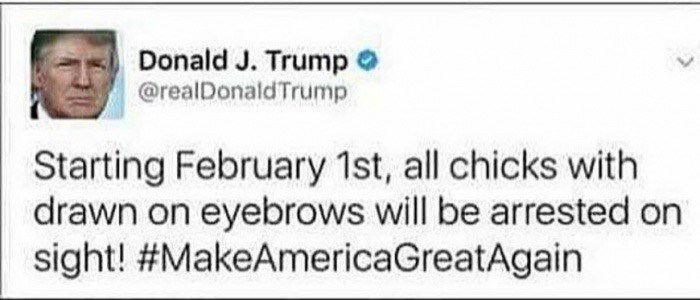 Text - Donald J. Trump @realDonaldTrump Starting February 1st, all chicks with drawn on eyebrows will be arrested on sight! #MakeAmericaGreatAgain