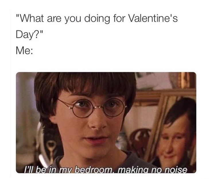 """Face - """"What are you doing for Valentine's Day?"""" Me: I'll be in my bedroom. makina no noise"""
